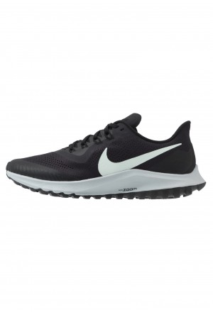 Nike AIR ZOOM PEGASUS 36 TRAIL - Trail hardloopschoenen oil grey/barely grey/black/wolf greyNIKE101782