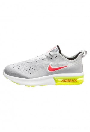 Nike Sneakers laag light greyNIKE303456