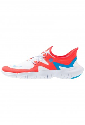 Nike FREE RN 5.0  - Loopschoen neutraal red orbit/blue hero/football grey/white/ghost/blackNIKE203111