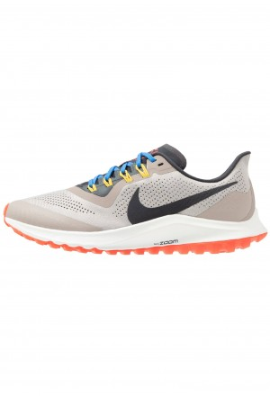 Nike AIR ZOOM PEGASUS 36 TRAIL - Trail hardloopschoenen pumice/oil grey/pacific blueNIKE101784